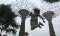Singapore in the Trees